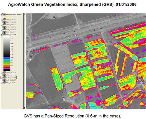 AgroWatch Green Vegetation Index Map